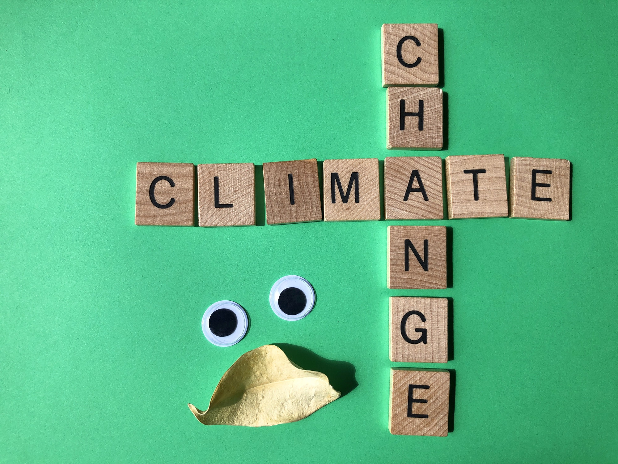 Climate Change in wooden alphabet letters